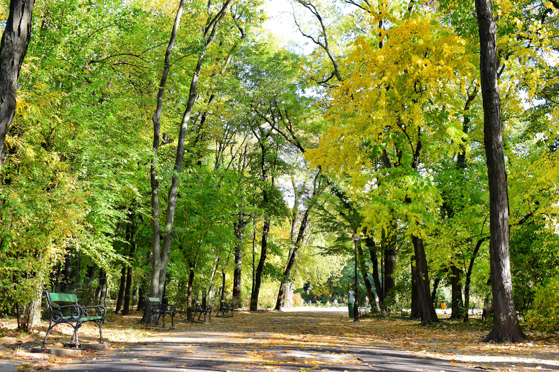 Plimbare prin parc