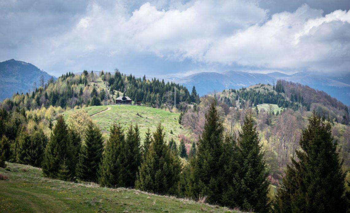 Muntele Draganu